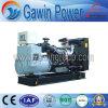 250KVA раскрывают тип тепловозное Genset с двигателем 1306A-E87Tag4 Perkins