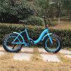 Свет весит складной электрический Bike с тучной автошиной (RSEB-509)