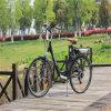Bicicleta elétrica da cidade quente da venda En15194 com cremalheira traseira (RSEB-203)