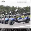 Nuova bici di Citicoco del prodotto di modo 2017, motorino elettrico con le grandi rotelle