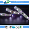 Tira flexible ULTRAVIOLETA ligera de SMD 2835 365-370nm LED