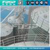 Rifornimento del silo di cemento/silo d'acciaio galvanizzato/silo di Lipp con il prezzo basso