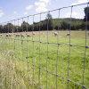 Heißer eingetauchter galvanisierter 6FT Bereich-Zaun