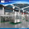 Linha fabricante de filtro da água de planta e de engarrafamento