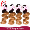 Virgin Ombre 유럽 Human Hair Weave High Quality 1b/27 Body Wave Hair Bundles