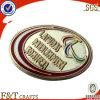 Esmalte suave placa de metal (FTBG4012P)