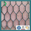 Disconto Coated Hexagonal Mesh Wire (xy-08)