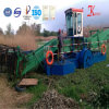 Plataforma da limpeza dos desperdícios da água para a exportação