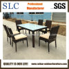 A tabela de jantar ajustou-se para a venda (SC-A7656)