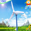 500W Small Wind Turbine/Mini Wind Generator/Micro Wind Energy para Home