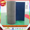 Цена по прейскуранту завода-изготовителя Wushu Carpet Mat/Rolling Mat/половой коврик Cheap Gym Mat/Cheer на Sale