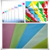Flags를 위한 정전기 방지 Semi Elastic Polyester Pongee