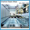 alta calidad competitiva del precio Inferior-e del vidrio laminado de 20m m
