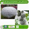 Prodotto non intessuto idrofilo per agricoltura ed il pannolino
