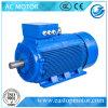 Motori elettrici potenti approvati Ce Y3 per la tagliatrice con le bobine di rame