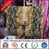 Il livello del tessuto del panno del PVC Rexine Shinny il cuoio del PVC