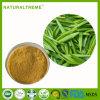 Tè verde di Chunmee delle indennità-malattia per il ripetitore di immunità