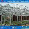 Serre chaude de jardin de feuille de PC d'agriculture pour des tomates pour Slae chaud
