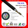 L'antenne de GYTS et canalisent 24 câbles optiques unimodaux de fibre de noyau