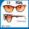 Lunettes de soleil à la mode de matériau de Cp de type de logo de Sun en verre de lunettes de soleil faites sur commande de chat