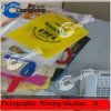 Film/machine d'impression en plastique de Flexo pour les sacs (CH884-800P)