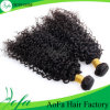 Kinky CurlyのためのPrice最もよい100%のインド人Human Hair Wig