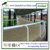 Frontière de sécurité flexible bon marché de course de chevaux