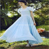 2013 Fashion exactly Stylish Princess party high Quality chiffon lung Dress (XYD-231)