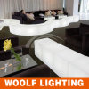 Color Changing LED Decoration Furniture를 불이 켜지십시오