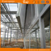 Serre chaude en verre de structure de Venlo belle