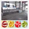 Automatisch PLC Hard Suikergoed dat Lijn Procressing deponeert