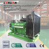 La generación de calor de gas de síntesis 20-500kw combinada de electricidad y biomasa de generador