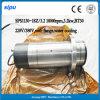 CNC de Water Gekoelde Atc Motor van de As