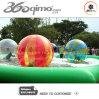 PVC gonflable de vente chaud, boule de marche de l'eau de TPU (BMSP331)