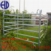 Гальванизированные металлом панели загородки поголовья лошади трубы