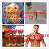 No de Cancertreatment CAS del pecho de Arimidex de la hormona esteroide: 120511-73-1