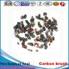 Escova de carbono para motores DC, carros, motores geradores