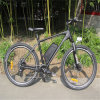 Bicicleta eléctrica negra de MTB con 250W (RSEB-401)