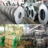 De eerste Plaat van het Roestvrij staal van de Kwaliteit AISI/SUS/DIN/ASTM 304/Sheet/Coil
