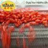 Фабрика ягоды Goji выдержки травы мушмулы естественная
