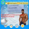 Muscolo magro che costruisce la polvere steroide 5721-91-5 di Decanoate del testoterone superiore