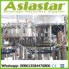 Machine carbonatée automatique de l'eau de seltz d'usine de mastic de colmatage de remplissage de Rinser de boisson