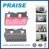 Kundenspezifische doppelte Farben-Maschinen-Plastikform