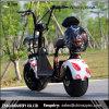 Motore freddo 1000W 80km di magnetico il motorino elettrico della rotella di Citycoco più alla moda 2, motociclo elettrico adulto