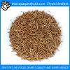 Larvas de farinha liofilizadas no volume