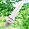 Minienergiesparende Lampe 2u (CFL 2u 04)