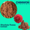 Realçar o extrato de Rhodiola Rosea da imunidade