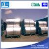 Bobines galvanisées plongées chaudes de bandes d'acier