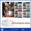 테스토스테론 Enanthate 스테로이드 분말/시험 Enanthate 주사 가능한 액체