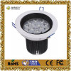 9W Round DEL Ceiling Light